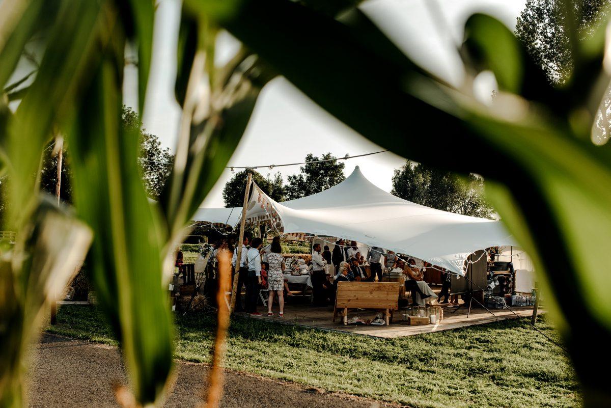 Tent bruiloft in het weiland
